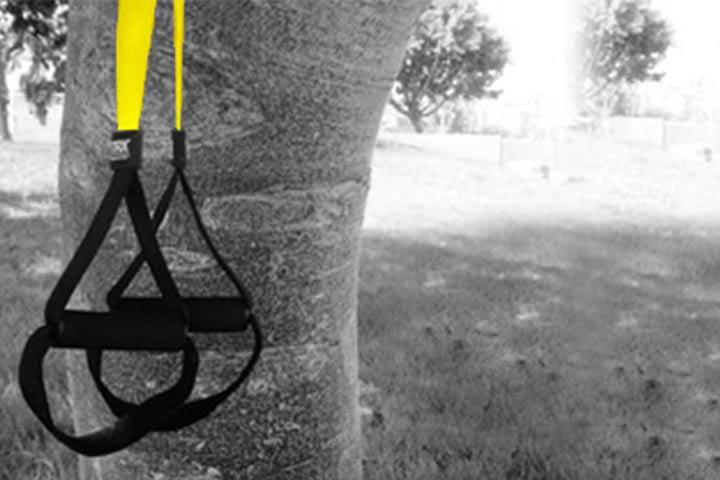 רצועות TRX תלויות על עץ