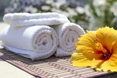 מגבת ופרח היביסקוס
